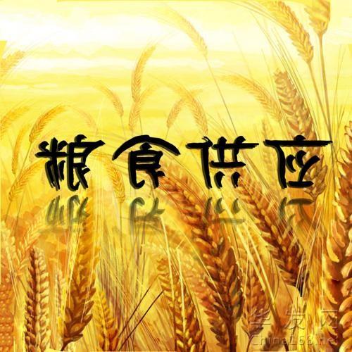 """連雲港糧食""""海河聯運模式""""     為""""一帶一路""""再開新通道"""